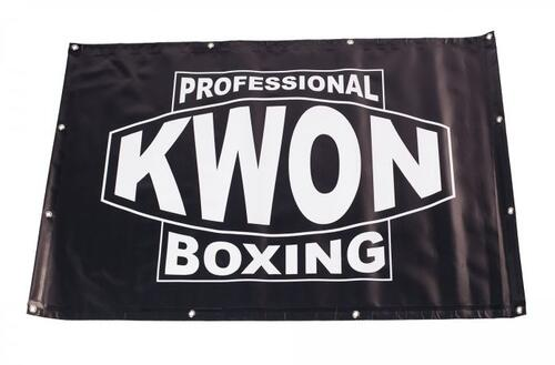 Professional Boxing Banner